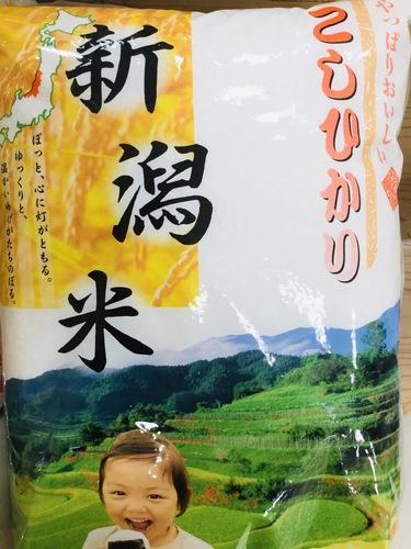 新潟県産 コシヒカリ